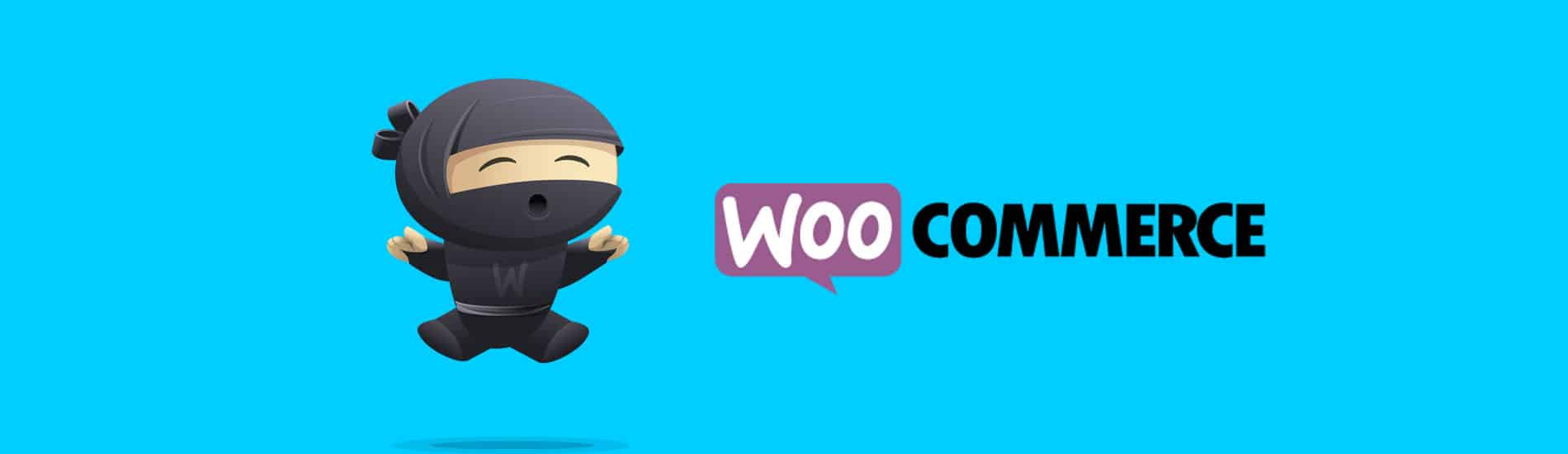 11 Best Free WooCommerce Plugins That Upgrade Your Store