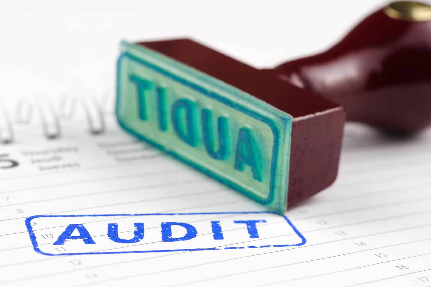 Types of Business Audits To Keep Your Business Healthy