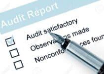 Reputation Audit