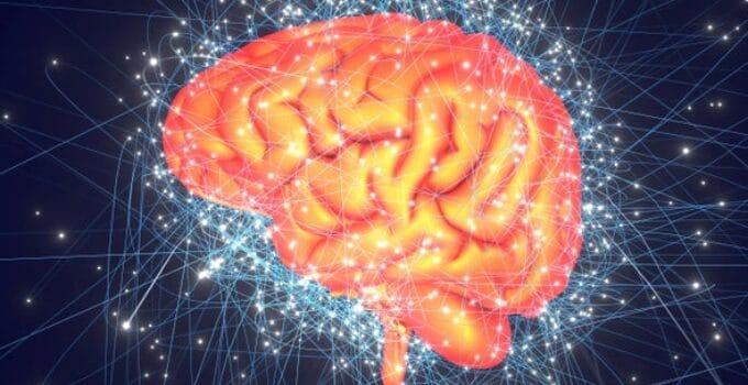 Neuroscience of Creativity